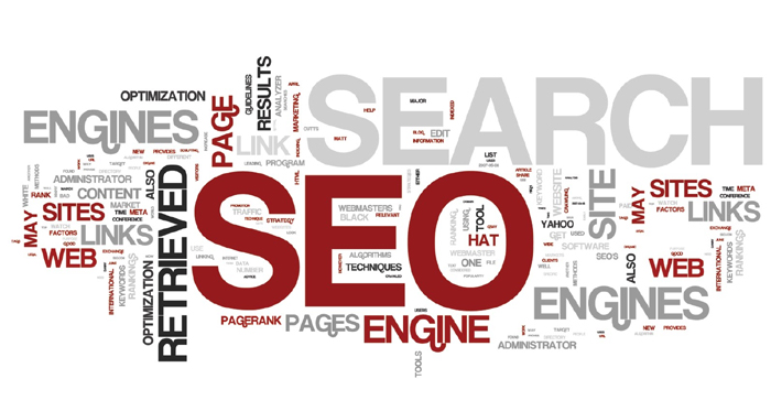 SEO Services in Jaipur | iGlobe Solutions